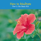 How to Meditate Part 1: The Basic Kit