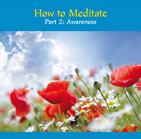How to Meditate: Part 2 (Awareness)